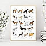 Pintura decorativa El perro diferentes razas de perros colección gráfico arte lienzo póster impresiones decoración de la pared del hogar pintura mascotas perros amante regalo idea 50x70cm