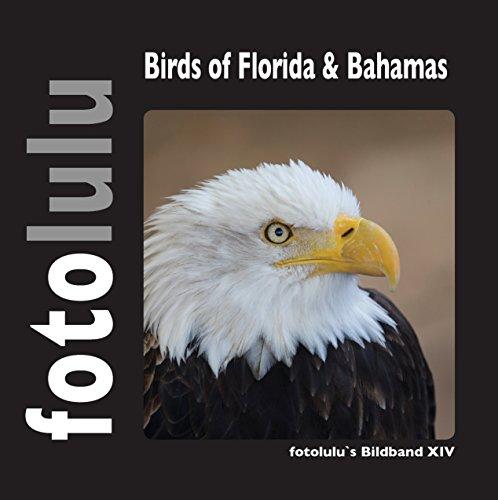 Birds of Florida & Bahamas: fotolulu\'s Bildband XIV