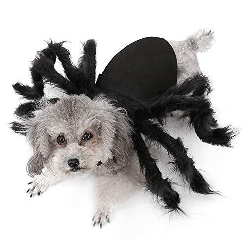 Fühlte Mich Tuch Spinne Haustier Kostüme Urlaub Atmosphäre Feier Party Supplies lustige Katze Hund Welpe Halloween Cosplay Kleidung