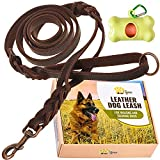 ADITYNA Double Handle Leather Dog Leash 6 Foot - Heavy Duty Dog Leash with Traffic Handle - Braided Leather Lead for Large and Medium Dogs
