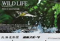 北海道新聞 2021 カレンダー WILD LIFE in HOKKAIDO