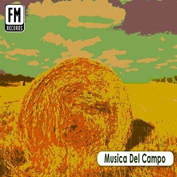 Musica del campo