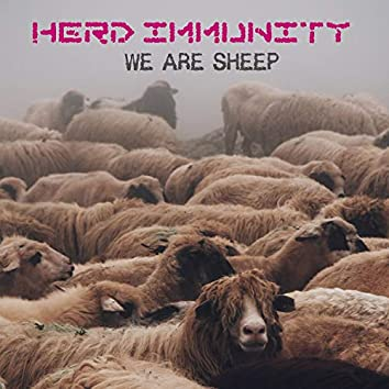 We Are Sheep