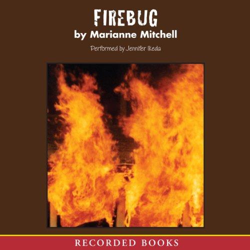Firebug audiobook cover art
