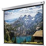 celexon manuell ausziehbare Heimkino- und Business-Rollo-Beamer-Leinwand 4K und Full-HD mit Slow-Return Professional Plus - 200 x 150 cm - 4:3