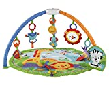 Fisher-Price Rainforest Friends Musical Gym (Discontinued by Manufacturer) by Fisher-Price