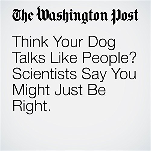 Think Your Dog Talks Like People? Scientists Say You Might Just Be Right. | Avi Selk