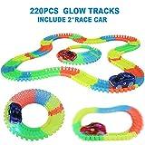 Nuheby Circuit Voiture Enfant Circuit Flexible Lumineux Jeu Circuit Voiture avec 220PCS Glow Track et 2 Voiture Cadeau Enfant 3 4 5 6 Ans (Circuit)