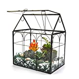 Large Tall Plant Terrarium Glass – Glass Greenhouse Terrarium with Lid, 8.7'X5.9'X10.6' Inches Indoor Tabletop Orchid Succulent Cacti Terrarium Kit NA (House Black A)