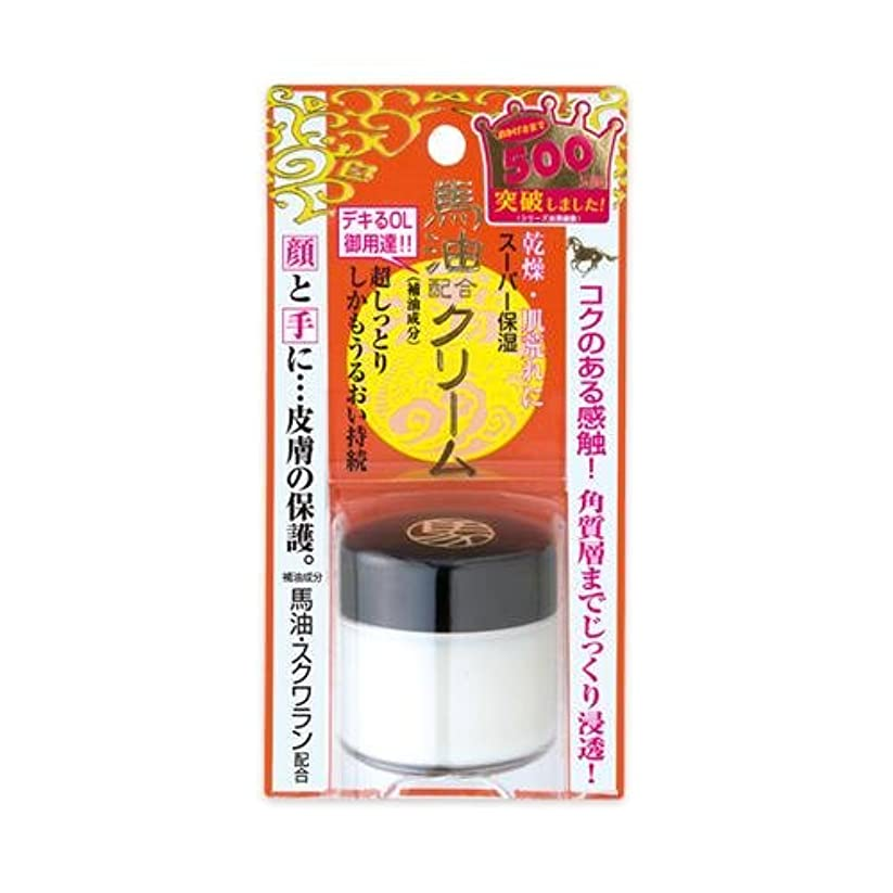 パケット遅滞評価する明色化粧品 リモイストクリーム リッチタイプ 30g [ヘルスケア&ケア用品]