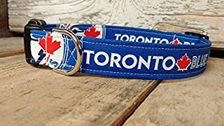 Toronto Blue Jays dog collar buckle or martingale with leash set option