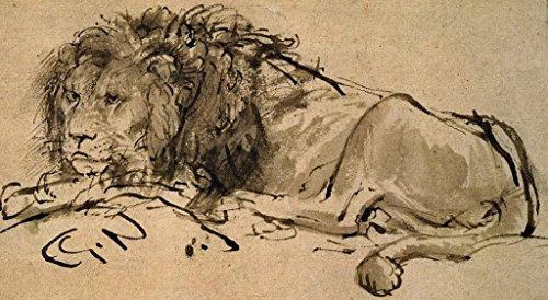 Rembrandt A Lion Lying Down Circa 1650 [Sketch Drawing] Art Print