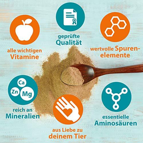 Ida Plus - Reines Bierhefe-Pulver - 500g - 100% Naturprodukt für Hunde, Katzen & Pferde - Futterergänzung für glänzendes Fell & kräftige Haut - reich an B-Vitaminen, Mineralien & Spurenelemente - 5