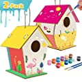 Kids Crafts Wood Arts and Crafts for Kids DIY Bird House Kit for Children to Build and Paint Reinforced Design - Creative Kids Activities and Projects Party Favors for 3+ Year Old Boys and Girls