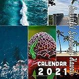 Beautiful Scenes of Hawaii Calendar 2021: 18-Month Calendar October 2020 through March 2022