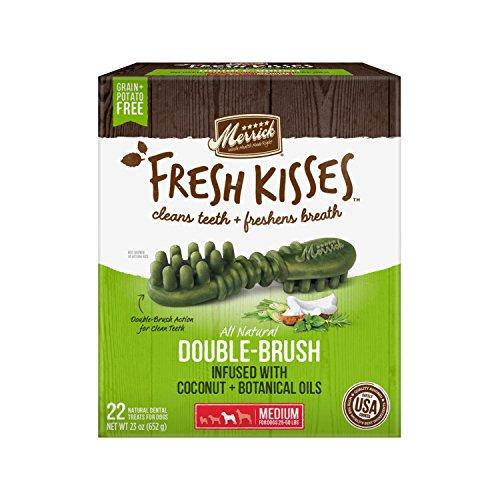 Merrick Fresh Kisses Coconut Oil + Botanicals Large Brush