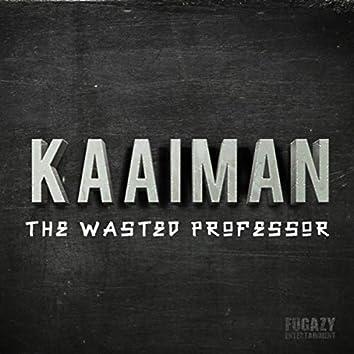 Kaaiman