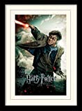 Harry Potter 1art1 Heiligtümer des Todes, Teil 2,