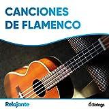 Canciones de Flamenco Relajante para Cenas de Gala