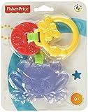 Fisher-Price Infant CBK76 - Dentaruolo Sonaglino, Rana, Multicolore