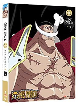 One Piece  Collection 19 [DVD]
