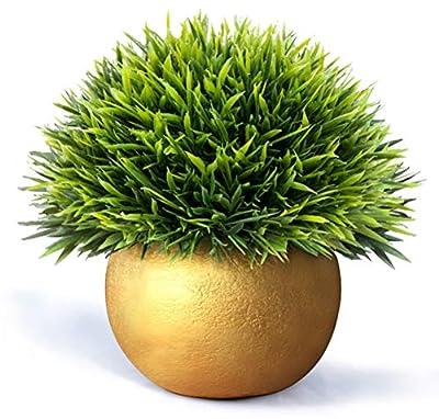 Vangold Lifelike Artificial Plants Plastic Grass Plants with Pots for Home/Office Decor (Gold-1pcs)