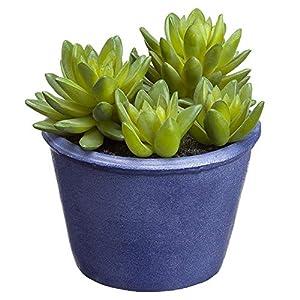 """Silk Flower Arrangements SilksAreForever 5.5"""" Artificial Sedum Succulent Plant w/Papier Mache Pot -Green (Pack of 6)"""