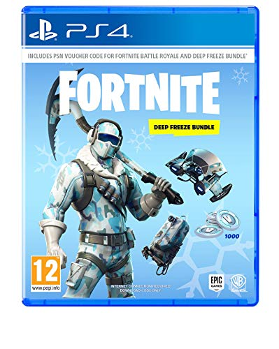 Fortnite: Deep Freeze Bundle (Sony PS4)