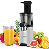 Juicer Machines, Nxone Slow Masticating Juicer Extractor, Cold Press Juicer Easy to Clean, Quiet Motor & Reverse Function, BPA Free, Higher Juice Yield Juice Extractor with Brush and Recipes for Fruits and Vegetables, Silver Gray