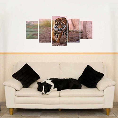 Wandsticker 5-teilig Blickfang für Ihr Wohnzimmer laufender Tiger WS043