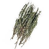 Original Italinischer Bio Rosmarin an Zweigen getrocknet   25g