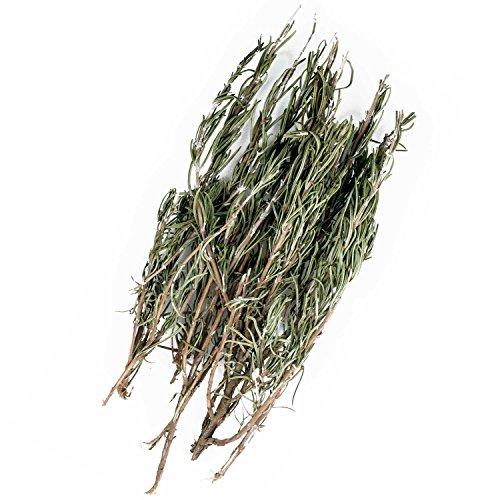 Original Italienischer Bio Rosmarin an Zweigen aus Sizilien Rosmarinzweige getrocknet 25g (ideal auch für Präsentkörbe)
