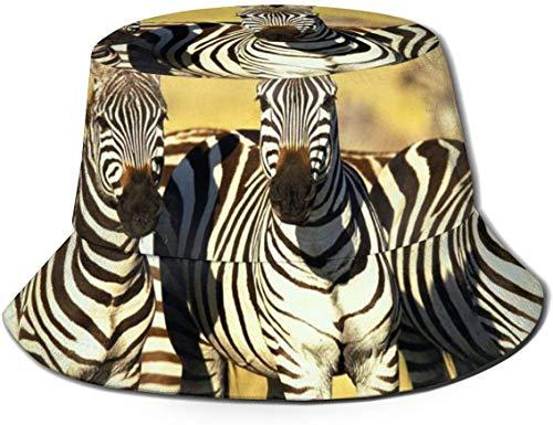 BONRI Sombreros de Cubo Transpirables Superiores Planos Unisex China Dragón Tigre Tai Chi Sombrero de Cubo Verano Sombrero de Pescador-Caballo de Cebra-Talla única