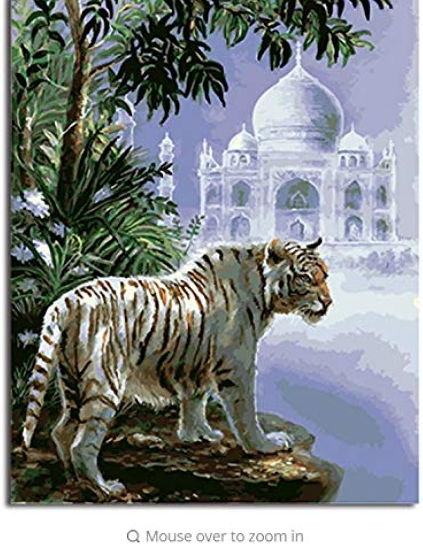 Liweixky Diy Malen Nach Zahlen Auf Auf Auf Leinwand Von Tieren Tiger