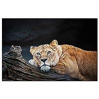 アメリカアメリカアトルボロ動物園マサチューセッツジグソーパズル1000ピースゲームアートワーク旅行お土産木製