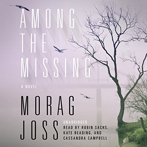 Among the Missing cover art