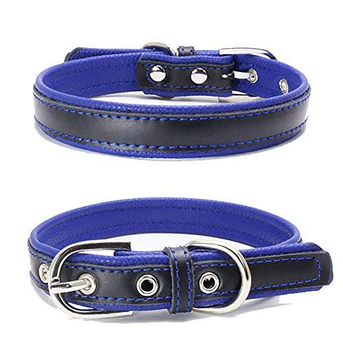 TFENG Hundehalsband, Verstellbarer Lederhalsband Basic Bling Halsbänder für Katzen und Hunde(Blau,XS)