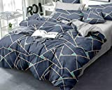 HOMERICA AC Comforter for King Size Double Bed , Package Contents - 1 AC Comforter with Carry Bag,...