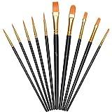 Vicloon Pinceles para Pintura, 10 Piezas of Pinceles de Nylon para acuarela, óleo, cara, dibujo de líneas, Set de Pinceles de Artista para principiantes, profesionales y amantes de la pintura (Negro)