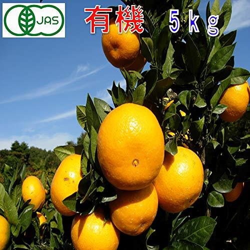 有機JAS みかん 訳あり 約5kg 和歌山産 2S~2L サイズ混合 ミカン 蜜柑 産地直送 SSS