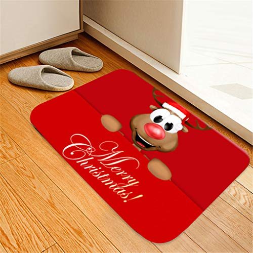 2019 Christmas Mats Doormat Outdoor Indoor Front Door Mats Non Slip Carpets for Adults and Kids Best Gifts (J)