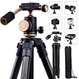 YoTilon Camera Tripod for DSLR, Portable Lightweight Travel Tripod for Camera, 360 Degree SLR Ball Tripods with 1/4 Plate for Canon Nikon Sony, Best Choice for Travel and Work.