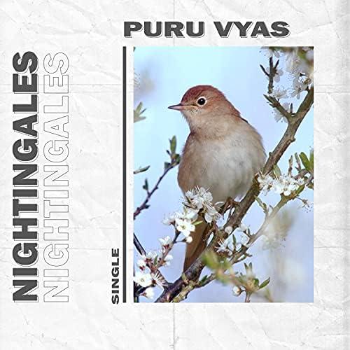 Puru Vyas