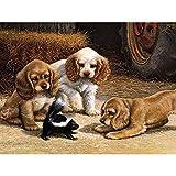 CASFSBLO Peinture par Numero pour Adultes et Enfants -Chiot et Blaireau de Miel- DIY kit de Peinture à l'huile avec pinceaux et peintures acryliques sûres de Haute qualité (40x50cm sans Cadre)
