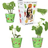 Window Garden Bean Sow Much Fun Seed Starting, Vegetable Planting and Growing Kit for Kids, 3 Self Watering Planters, Soil, Seeds and Puffy Stickers. No Mess, Easy, Works Great!