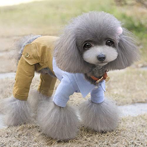 BAYUE Cool Hond Kleding Boog Hond Jumpsuit Romper Lente Huisdier Jas Bruiloft Huisdier Kostuum Chihuahua Kleding Voor Kleine Honden, M, Blauw