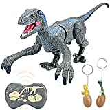 ZornRC Remote Control Dinosaur Toys, Walking Robot Dinosaurs Toy with Light and Roaring Sound, 2.4Ghz Touch Control Simulation Velociraptor Electronic RC Dinosaur Toys for Kids 5-7 Birthday Gifts