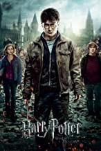 Harry Potter And The Deathly Hallows: Part 2 - Movie Poster (Regular Style) (Size: 22