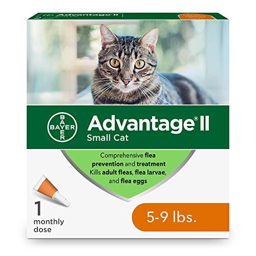 Bayer Advantage II Flea Prevention for Small Cats, 5-9 lb, 1 dose