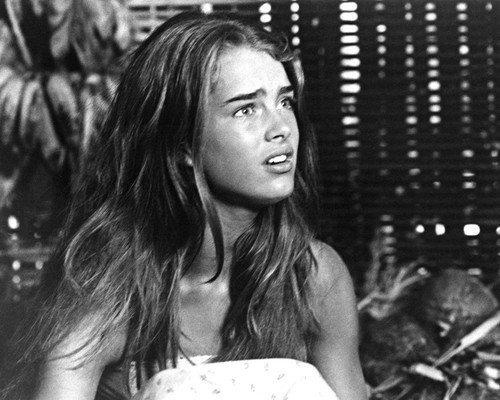 The Blue Lagoon Brooke Shields Portrait 1980 16x20 Poster